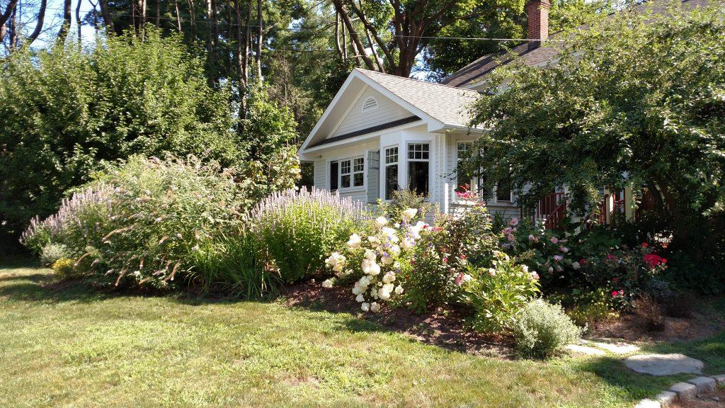 backyard in springtime